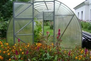 Теплица, для выращивания овощных культур.